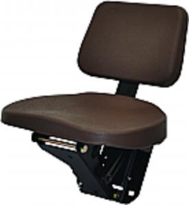 Buddy Seat