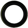 Input Spur Gear Oil Seal