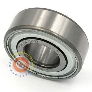 204RR6 Spindle Bearing