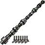 Camshaft and Lifter Kit